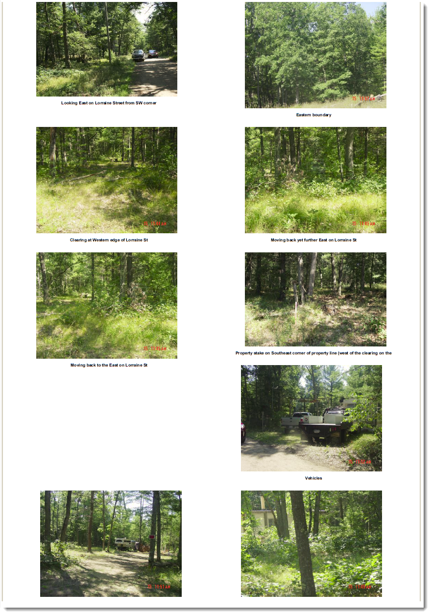 WeGoLook Report Page 2