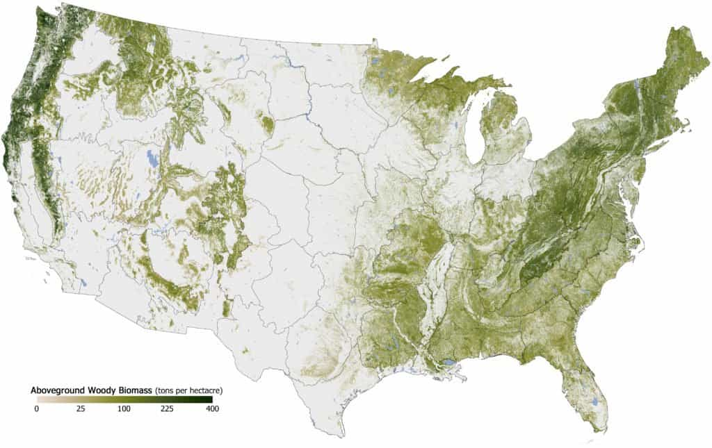 Aboveground_Woody_Biomass_in_the_United_States_2011