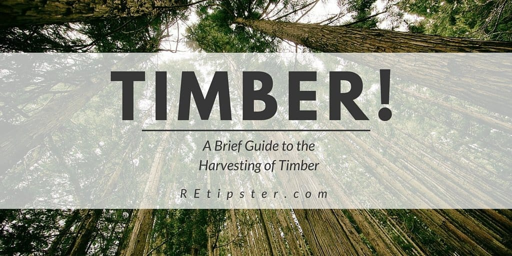 Timber A Guide To The Harvesting Of Trees Retipster