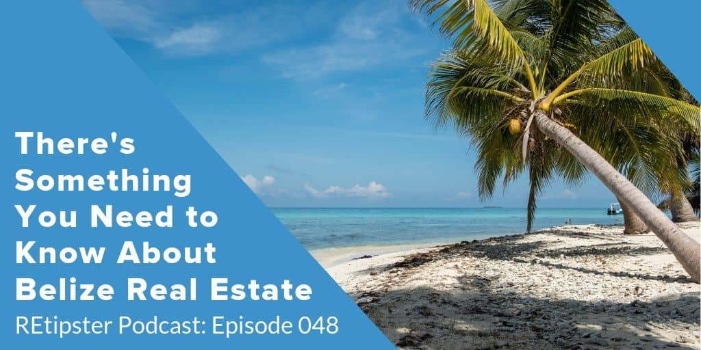 Belize Real Estate Will Mitchell Interview